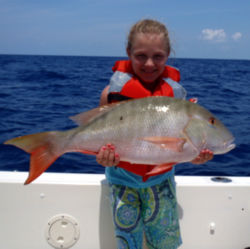 Snapper Caught With Island Lure Charters