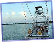 Catch Fish With Main Attraction Sportfishing - Marathon Florida